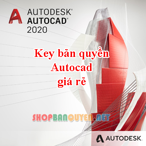 Key License Autodesk AutoCAD 2018/2019/2020/2021 Edu bản quyền 1 năm cho Windows/Macbook