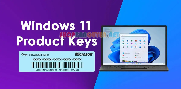 Key Windows 11 PRO 32/64 BIT bản quyền vĩnh viễn